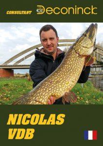 nicolas-consultant